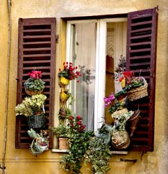 Perugian Window 1