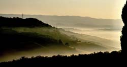 Tuscan Morning Mist 1