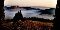 Tuscan Morning Mist 2